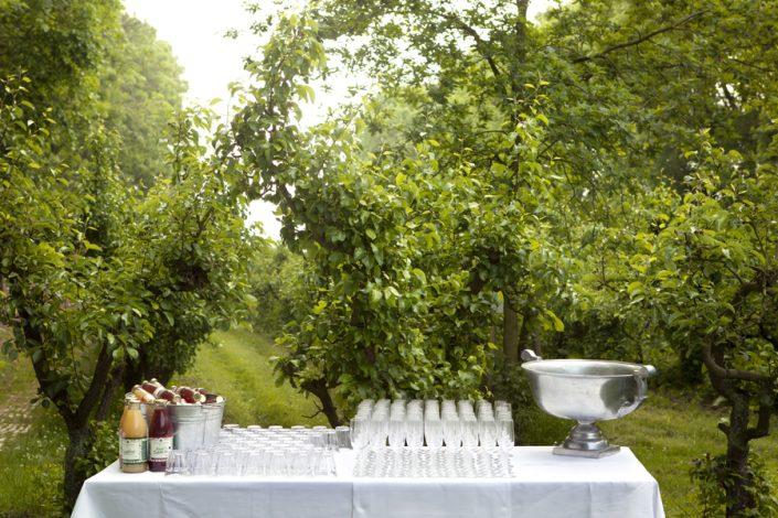 Een landelijke trouwfoto van de champagne tussen de appelbomen.